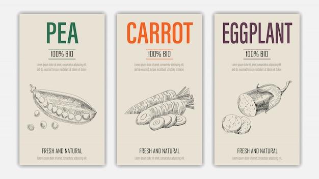 Набор шаблон этикетки с горохом, морковью и баклажанами в стиле ретро винтаж рисованной или эскиз.
