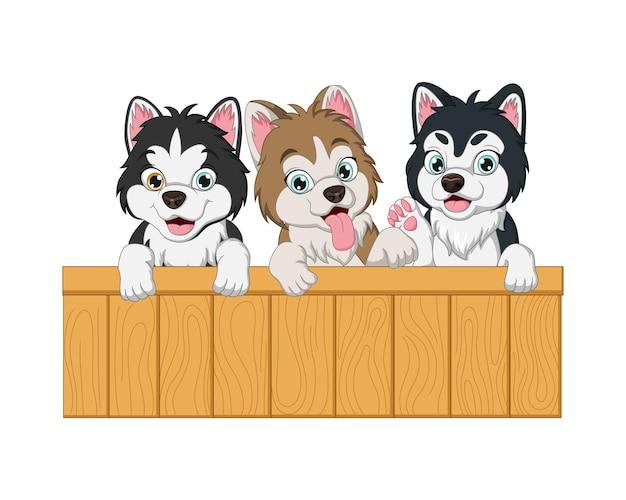 木製の看板と3つの赤ちゃん犬の漫画のセット Premiumベクター