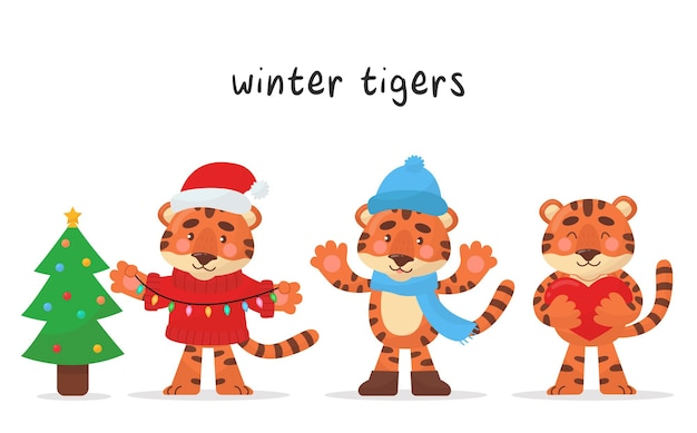 귀여운 호랑이 캐릭터 3종 세트입니다. 각 겨울 월별 캐릭터. 벡터 만화 스타일입니다. 일러스트는 아동용품, 스티커, 현수막, 포스터 등에 적합합니다.