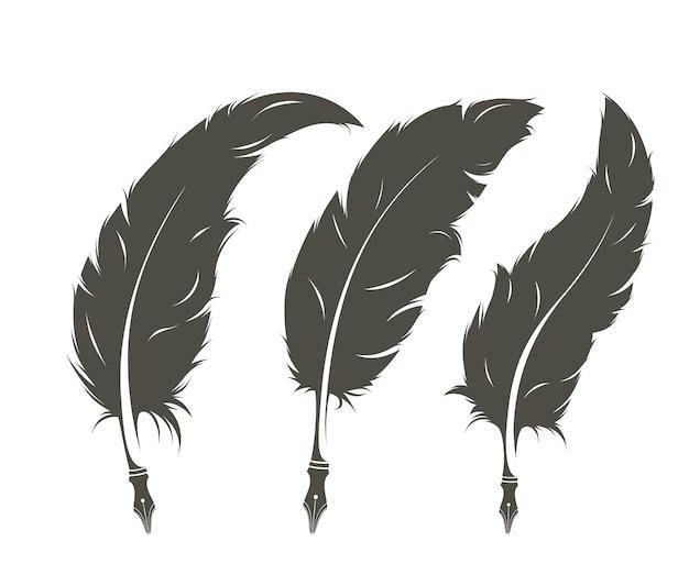 쓰기 위한 3개의 격리된 깃털 세트