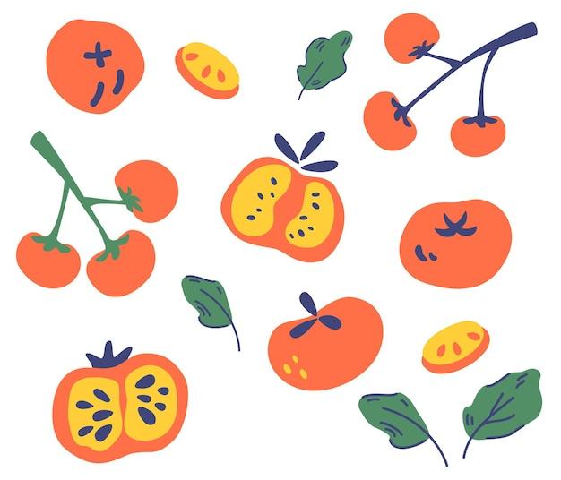 トマトのセット。さまざまな種類のトマト。トマトの全体、スライス、四分の一、半分。野菜、菜食主義者、ビーガンの健康食品。装飾、キッチン、メニュー、ショップ、レストランに。ベクトルイラスト