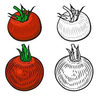 흰색 바탕에 토마토의 집합입니다. 로고, 라벨, 엠블럼, 포스터, 메뉴 요소. 삽화