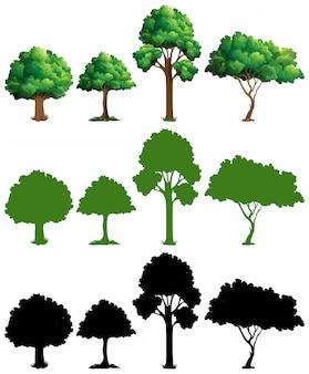 나무 디자인의 세트