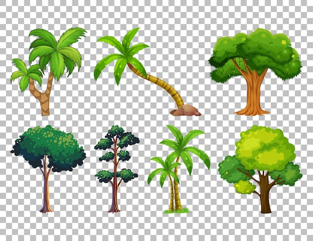 Набор дерева на прозрачном