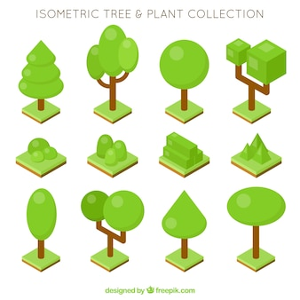 Set of trees and plants in isometric style