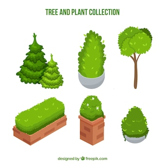 Set of trees and plants