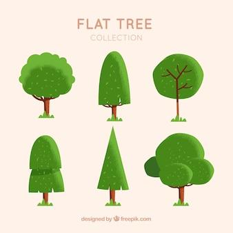 Набор деревьев в плоском стиле