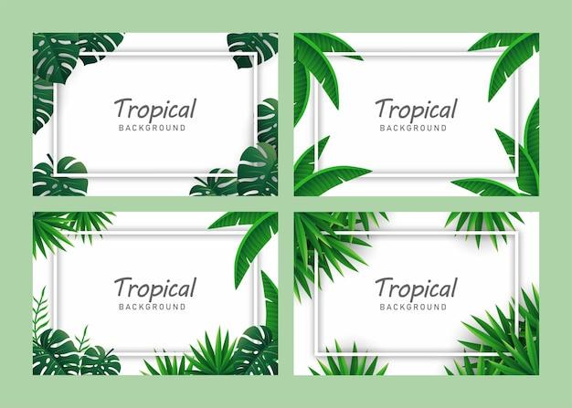 Набор тропических фоновых иллюстраций вектор