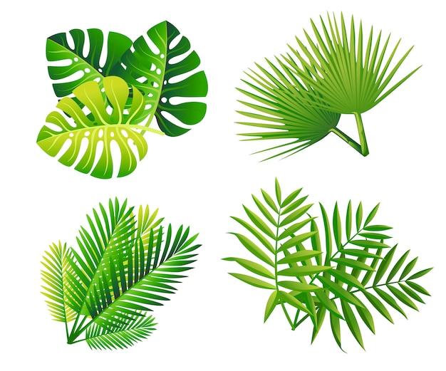 Набор тропических зеленых листьев. плоский пальмовый лист. значок экзотических растений. иллюстрация, изолированные на белом фоне.