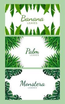 Набор тропических листьев фоновой иллюстрации вектор