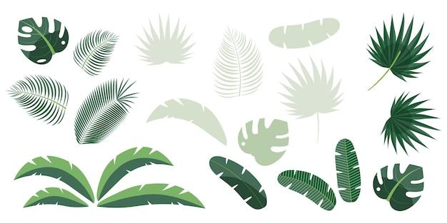 흰색 배경에 분리된 야자수, 양치류, 몬스테라, 바나나의 열대 잎 세트. 그려진 이국적인 정글 디자인 요소의 밝은 벡터 일러스트 레이 션.