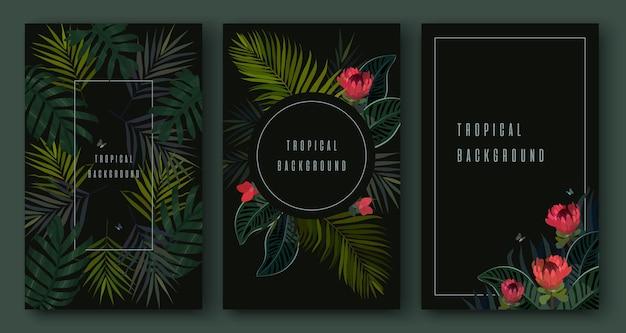 Набор тропических листьев на черном фоне. ботанические элементы. экзотический дизайн.
