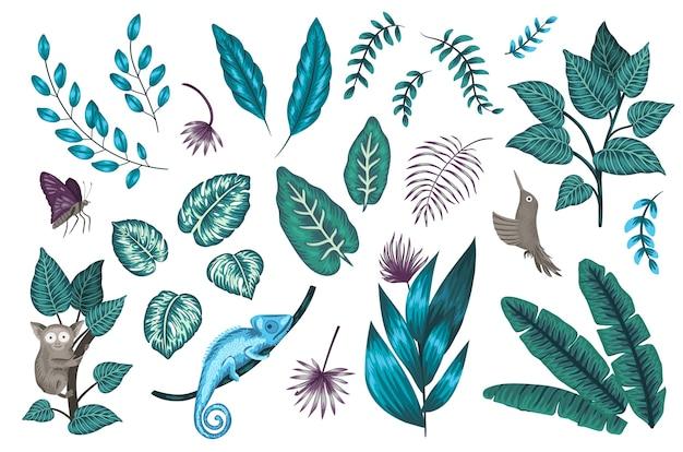 Набор тропических растений и животных