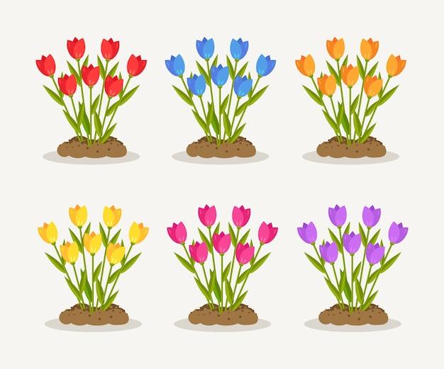 チューリップ、赤いバラ、汚れた、白い背景の上の地面のヒープと花の束のセット。花の花束、花と葉を持つ植物。夏の庭、春の森。