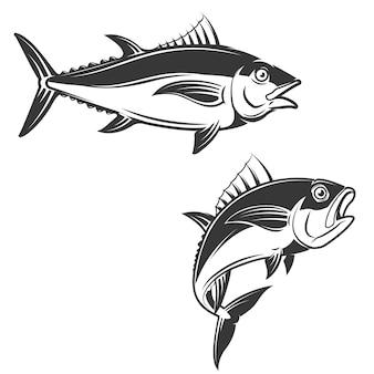 Набор рисованной руки тунца