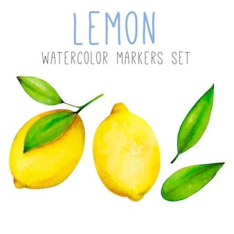 緑の葉を持つ2つの明るいレモンのセット