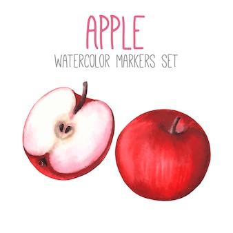 2つの赤い水彩りんごのセット
