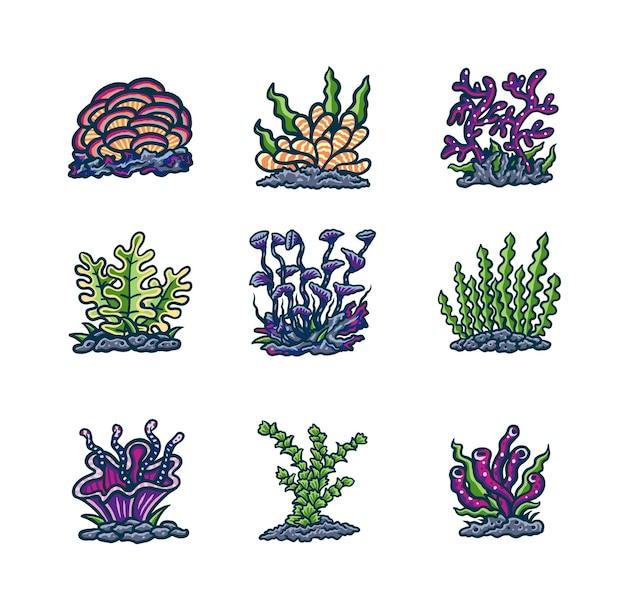 수중 식물 세트