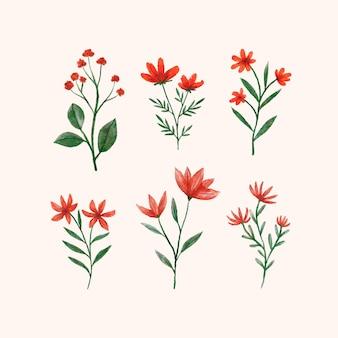 다양한 손으로 그린 꽃 세트