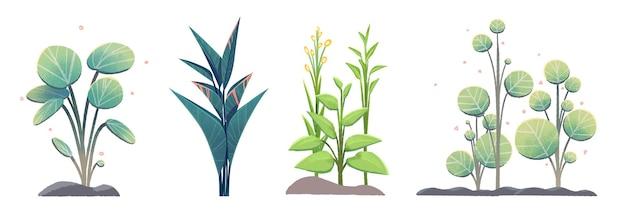 Набор векторных растений, на белом фоне. элементы дизайна плоские красочные векторные иллюстрации