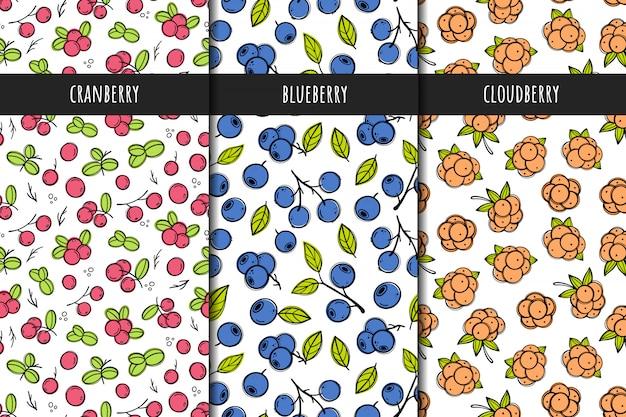 ベクターのシームレスパターンのセットです。クランベリー、クラウドベリー、ブルーベリーのベリーパターン。手描きスタイル