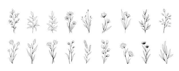 벡터 빈티지 꽃 요소의 집합입니다. 낙서 프레임과 테두리의 귀여운 세트입니다. 요소 꽃, 가지, 스와시 및 번창