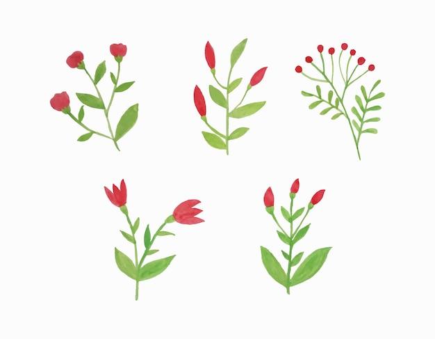 벡터 수채화 잎과 꽃의 세트