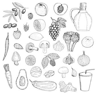 채식주의 음식 벡터 일러스트 스케치 세트