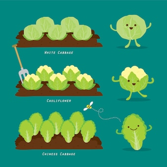 菜園のセットです。有機的で健康的な食品漫画イラスト。