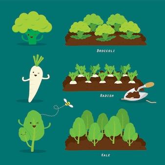 Набор огород. органические и здоровой пищи мультфильм иллюстрации.