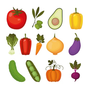 Набор иконок овощей на белом иллюстрации дизайн