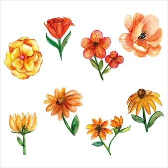 春の季節のグリーティングカードまたは他のカードの葉と鮮やかな黄色の花のセット