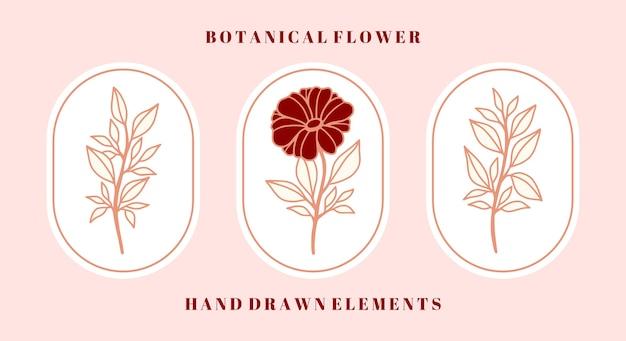 여성스러운 아름다움 로고 및 브랜드를위한 빈티지 식물 데이지 꽃과 잎 요소 세트