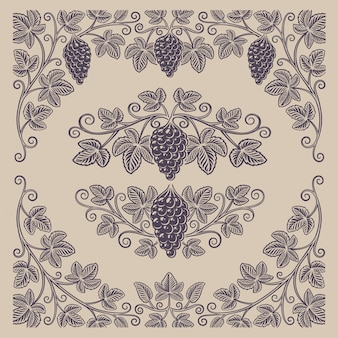 밝은 배경에 장식 또는 알코올 브랜딩을위한 포도 가지와 테두리의 빈티지 요소 집합입니다.
