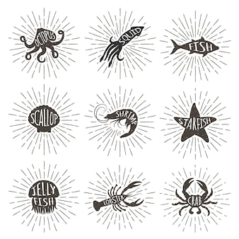 ヴィンテージのセットは、太陽光線で描かれた海の動物を手します。