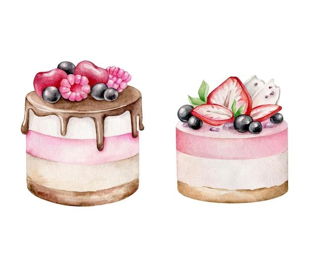 白で隔離の果実と水彩ケーキのセット