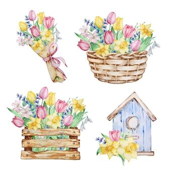 수채색 구성 세트는 봄 꽃, 바구니, 새집, 튤립, 수선화, 스노드롭이 있는 상자입니다. 인사말 카드, 초대장, 포스터, 결혼식 장식 및 기타 이미지를 위한 꽃무늬 디자인.
