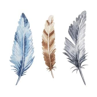 수채화 깃털, 파란색, 갈색 및 회색의 집합입니다. boho 스타일. 그림 흰색에 격리입니다.