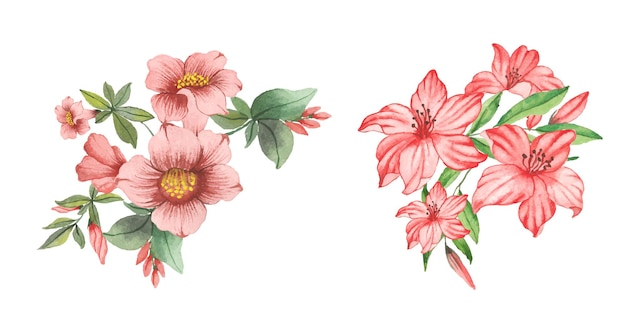 수채화 꽃과 잎의 세트