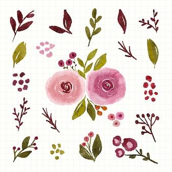 수채화 꽃 수국 녹색 분홍색과 잎 절연 클립 아트 세트