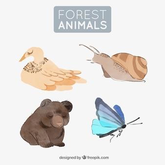 水彩の森の動物のセット