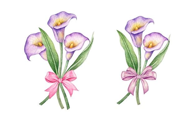 수채화 손으로 그린 칼라 백합 꽃 세트
