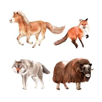 水彩の馬、キツネ、ヤクのイラストのセットです。