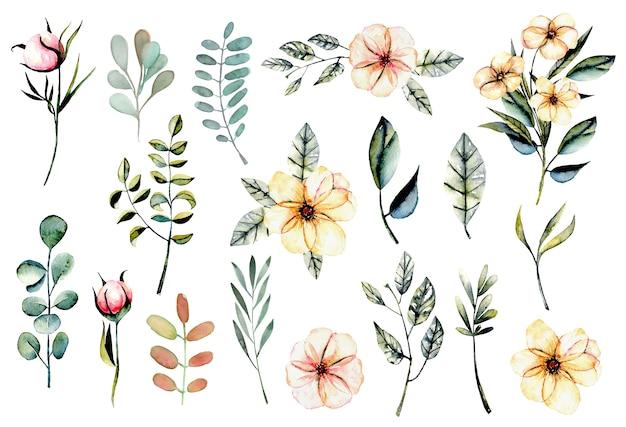 水彩のピンクの花と葉のイラストのセット