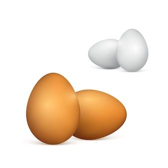 白と茶色の卵のセットです。現実的な鶏の卵。白い背景の上の図