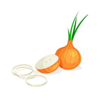 Набор из целого, половинного, отрезанного ломтика, колец и кусочка лука, изолированные на белом фоне. веганские пищевые овощные иконки в модном мультяшном стиле. концепция здорового питания.