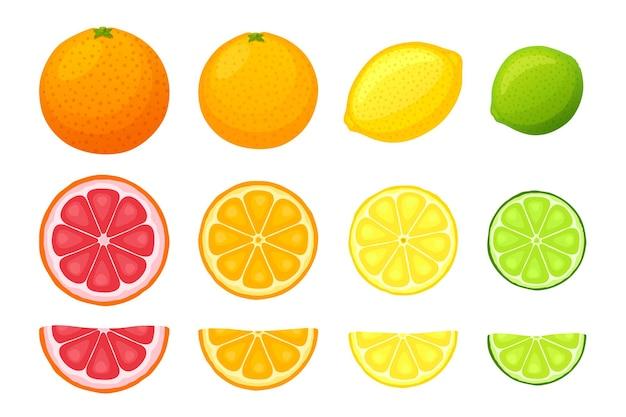 Набор из целого ломтика и половины фруктов апельсина, грейпфрута, лимона и лайма, векторные иллюстрации