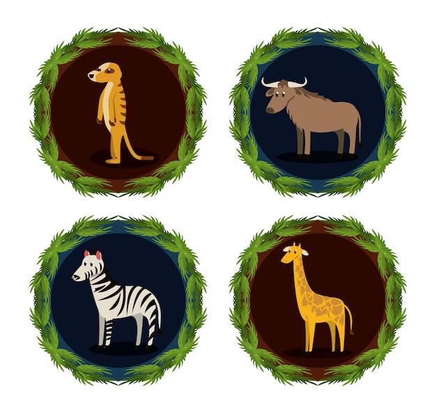 野生のアフリカの動物のセット