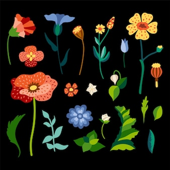 평평한 스타일의 야생 꽃 세트.