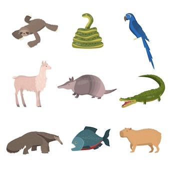 野生の南アメリカの動物、オウム、白い背景で隔離の魚のセット